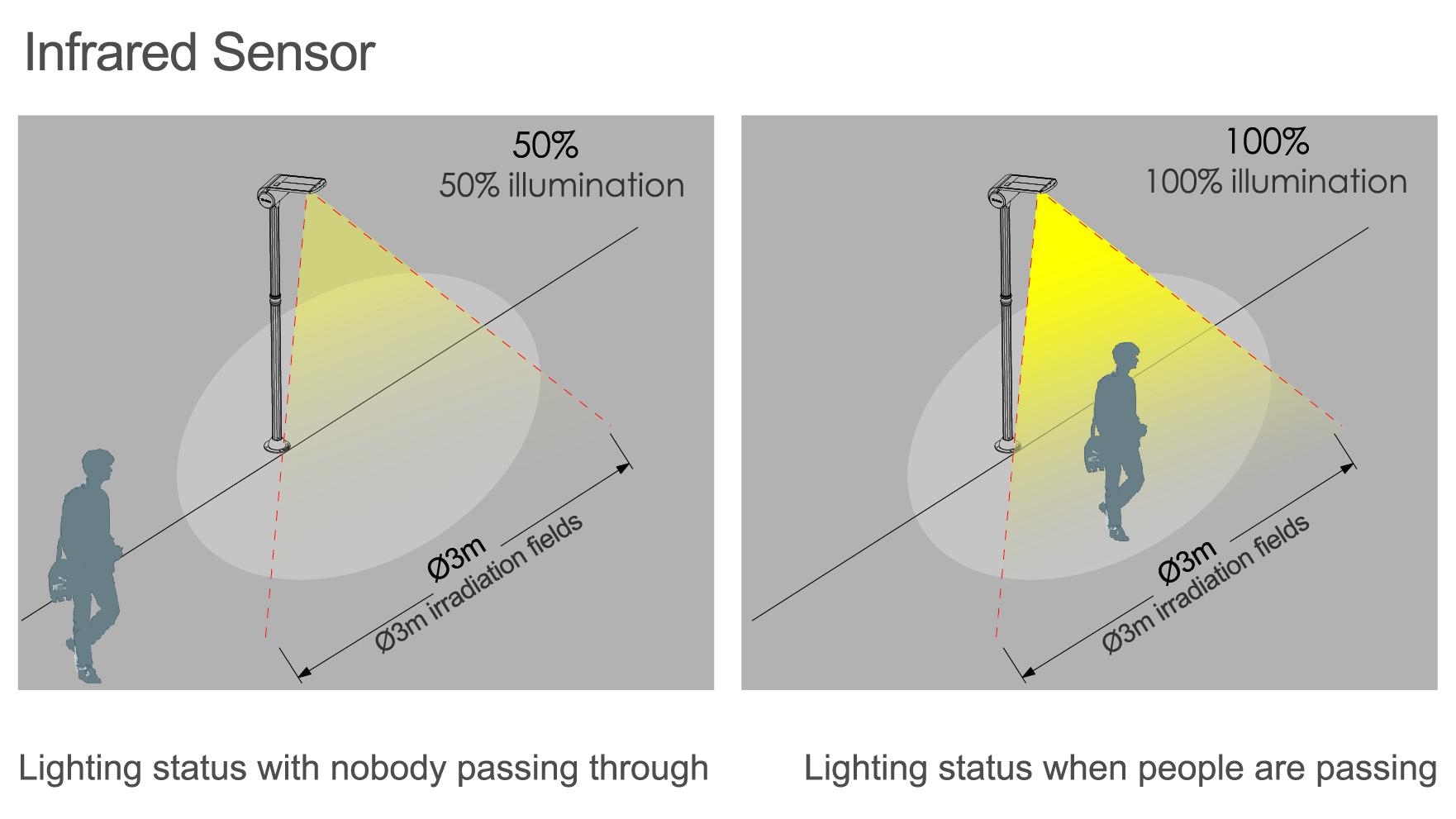5.5W_LED_Solar_Landscape_Light_NCD-083A_6